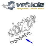 VQP0134 VAG 2.0 TDI Wervelkleppen & P2015 Verwijder Kit Aluminium Inlaatspruitstuk (3)
